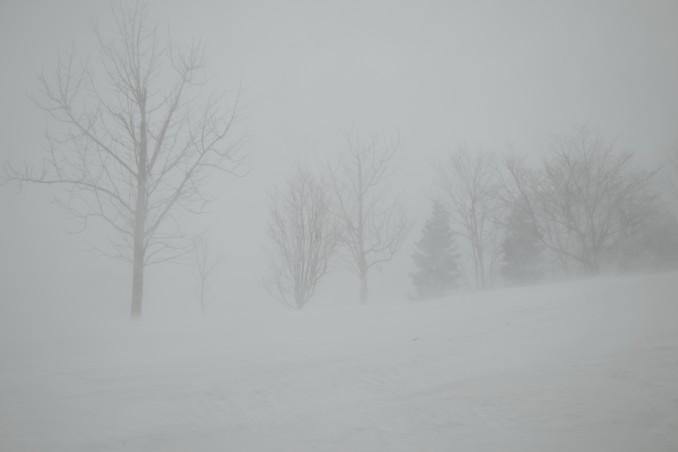 もの凄い吹雪