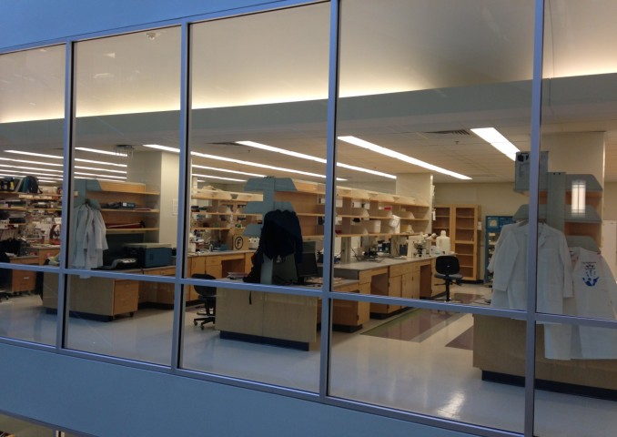 研究室はガラス張り