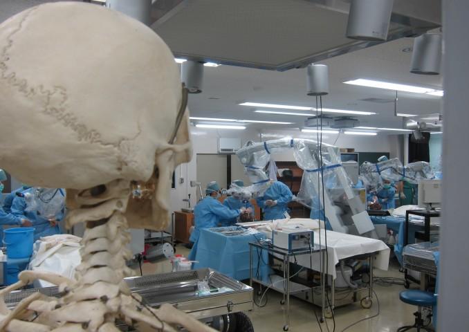 解剖学教室での一風景です。みんなの手術力が上達しますように。
