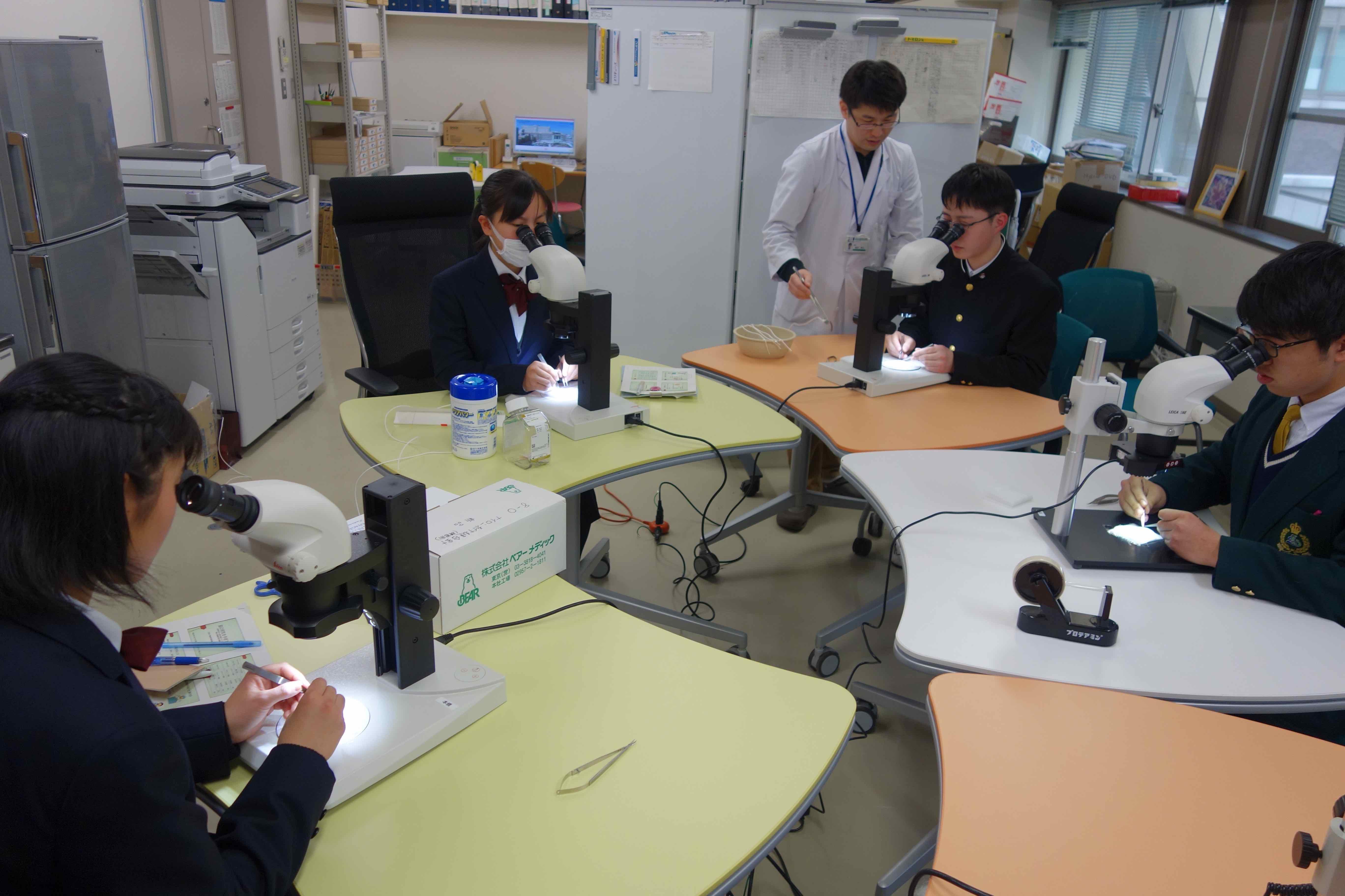 顕微鏡下での縫合練習